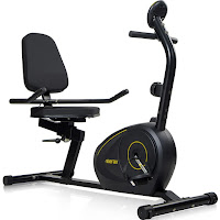 Merax RB1020 Magnetic Recumbent Exercise Bike, with step through frame, large padded seat with backrest, adjustable for different heights with sliding seat rail system, 8 resistance levels, LCD monitor
