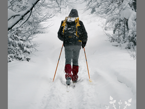 7 Winter Activities to Try This Year