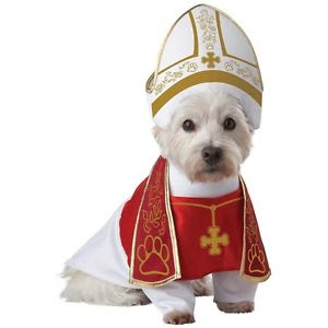 dog dressed as pope