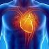 كيف يعمل قلب الإنسان ؟