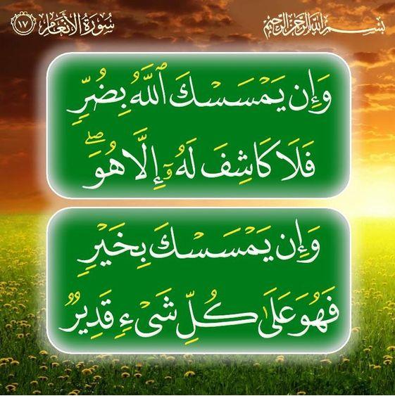 سورة الأنعام سورة 6 عدد آياتها 165