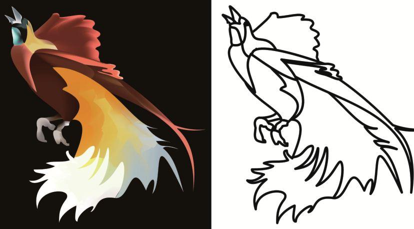 7400 Koleksi Gambar Burung Cendrawasih Animasi HD Terbaru