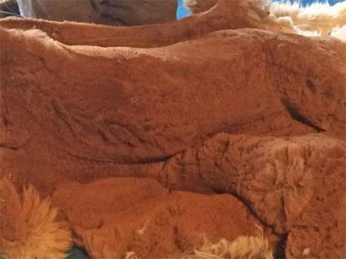 Alpaka Rohwolle kaufen