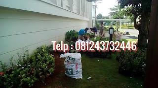 Tukang taman pondok indah, Jasa pembuatan taman di Pondok indah