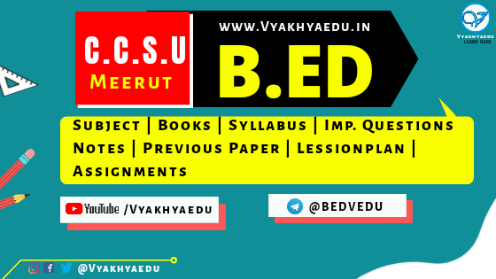 CCSU, Meerut B.Ed. (Bachelor of Education) Syllabus & Previous Year Papers for 1st & 2nd Year