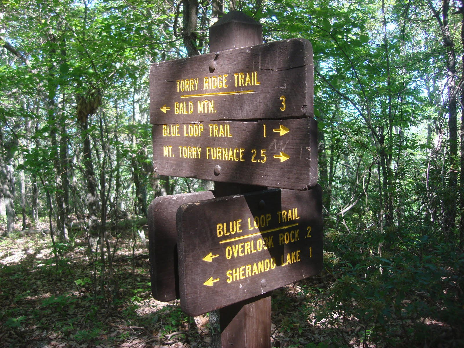 Wandering Virginia: 100 Great Day Hikes Every