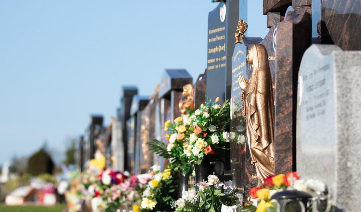 Palmerstown Cemetery (Dublin, Ireland)