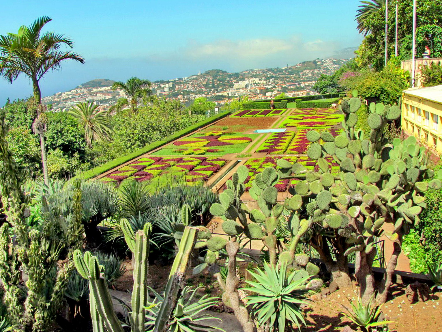 collors and shapes in Botanic garden