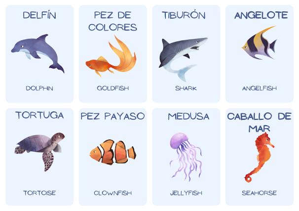 sea creatures in Spanish