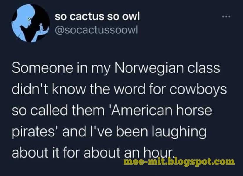 Norweigian meme