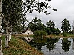 Parc Natural del Delta de l'Ebre per Teresa Grau Ros a Flickr