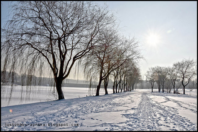katowice miasto zima krajobraz zdjęcia