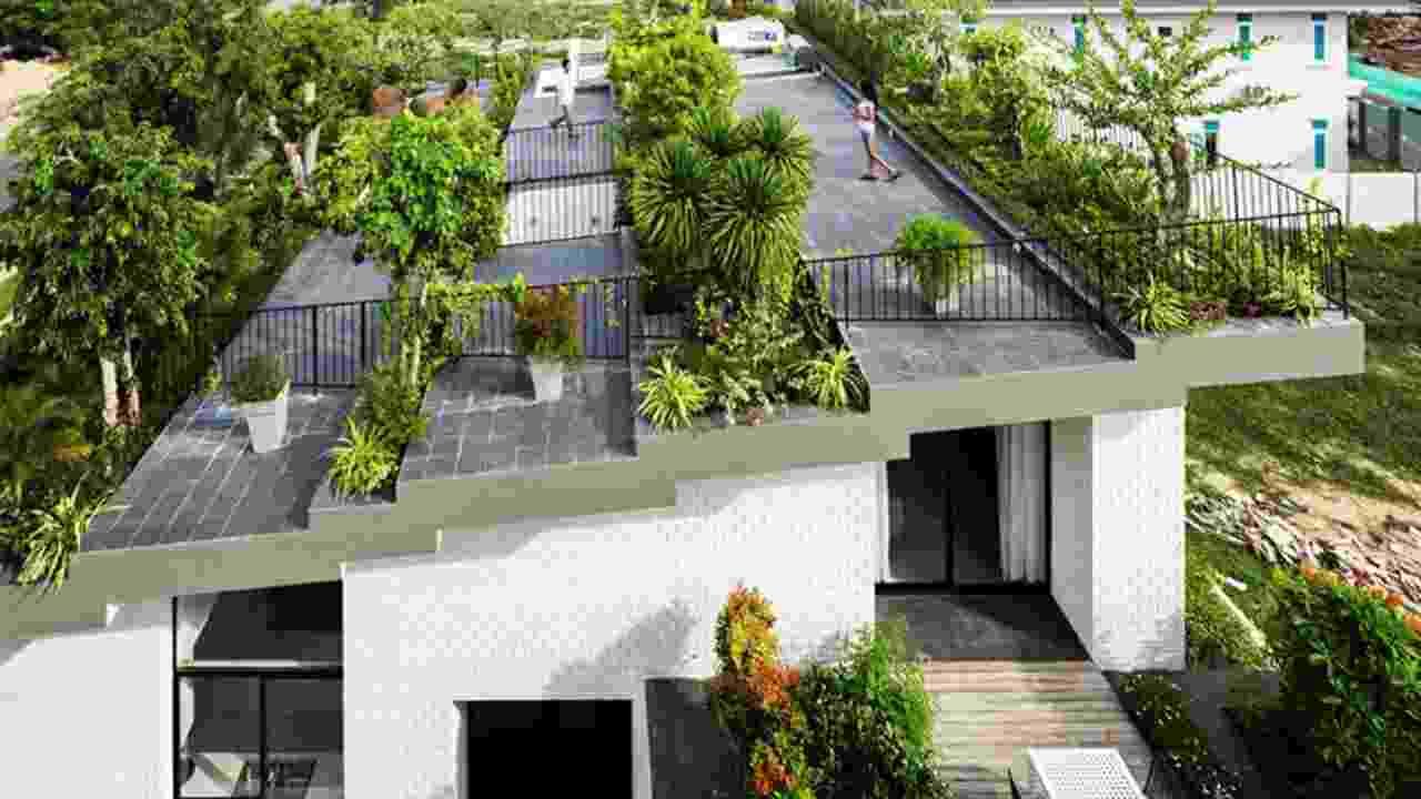 Hal Yang Perlu Difikirkan Sebelum Membangun Teras Atap Rumah (Rooftop)