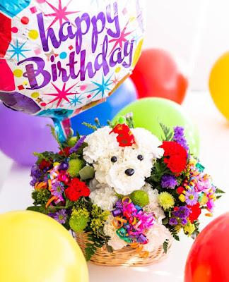 Like and reply to 1-800-Flowers monthly Facebook posts for a chance to win gorgeous floral arrangements to celebrate your birthday!