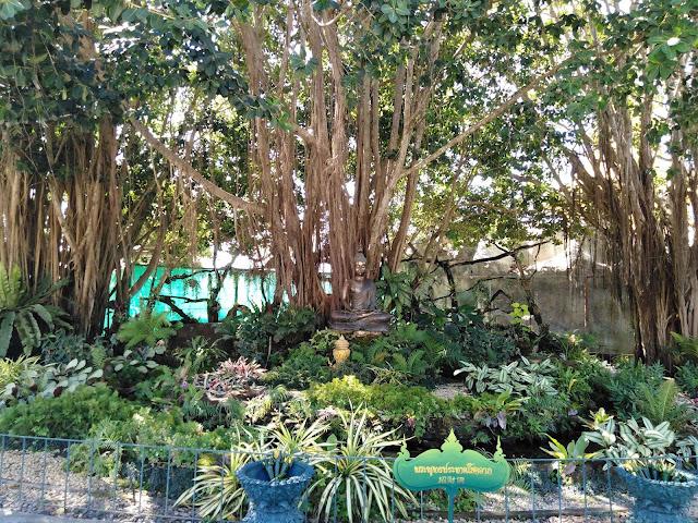 Giardino Tropicale in Thailandia