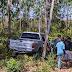 Motorista perde controle de Hilux e vai para dentro de plantação de eucalipto próximo a entrada do povoado Bacuri