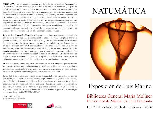 """Inauguración de la exposición de Luis Marino """"Natumática""""."""