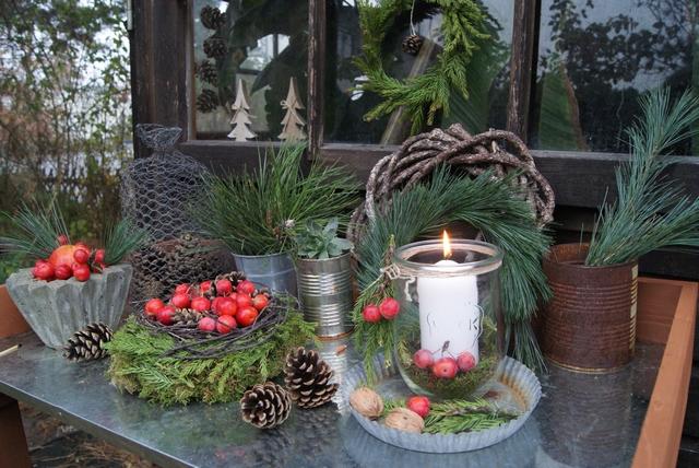 Pflanztisch und Gartenhausfenster weihnachtlich dekoriert