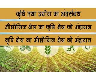कृषि तथा उद्योग के बीच अर्न्तसंबंध | औद्योगिक क्षेत्र का कृषि क्षेत्र को अंशदान | कृषि क्षेत्र का औद्योगिक क्षेत्र को अंशदान | interrelationship between agriculture and industry