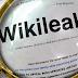 Αν για τη «διαρροή» των wikileaks ευθύνεται η Ελλάδα, ετοιμαστείτε για πόνο και κλάμα !