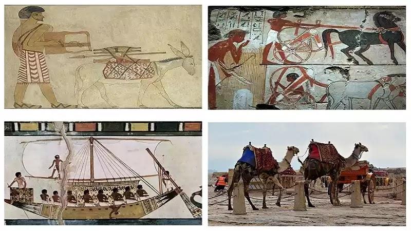 Ancient Egyptian Transportation