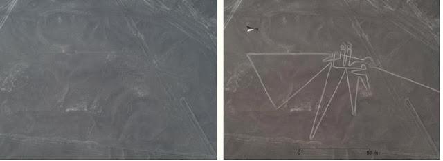 [Arqueologia] Descobertas Arqueológicas Recentes Geoglyphe-oiseau