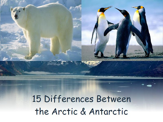 arctic and atlantic difference