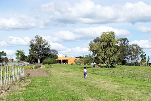 Desconectando na Pousada Campotinto, em Carmelo, no Uruguai