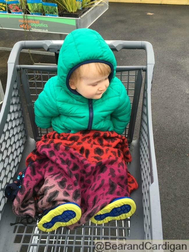 A Very Quiet Week. Just Sand and Water A toddler sat in a shopping trolley covered with a scarf