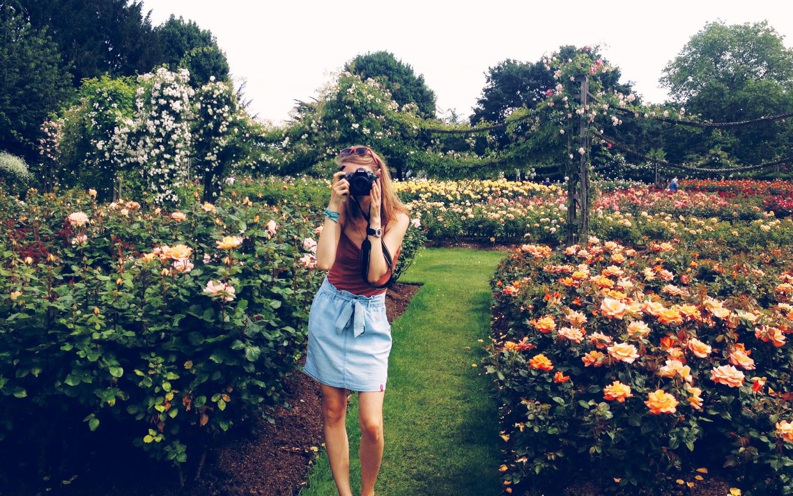 Roses In Garden: The Rose Garden { Queen Mary's Rose Garden