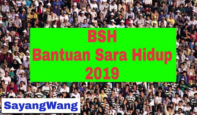 BSH Bantuan Sara Hidup 2019