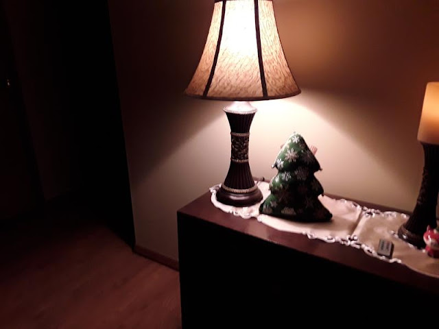 Beautiful Live Lamp Inspired from Cactus Beautiful Live Lamp Inspired from Cactus Sensual 2BSubtle 2BStar 2BLamp4664
