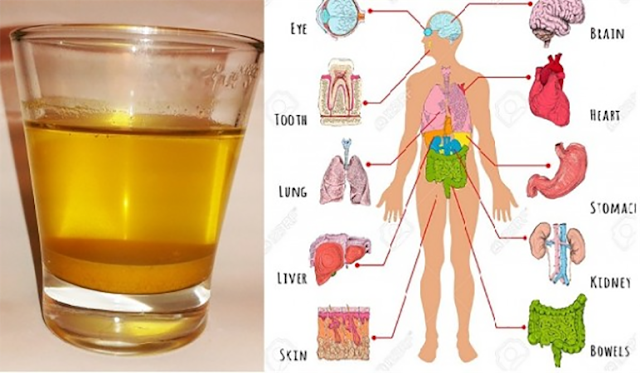Drink One Cup Of Turmeric Water In The Morning And These Things Will Happen To Your Body