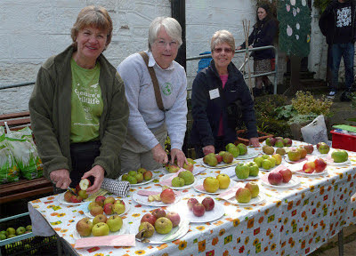 Apple varieties at Eastham Country Park