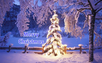 Merry Christmas Tree HD Images