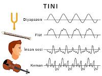 Tını, diyapazon flüt insan ve keman ses dalgaları