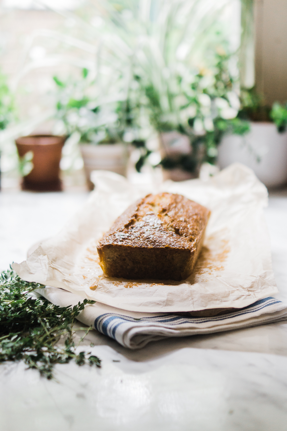 lemon-thyme-courgette-cake-recipe-food-photography