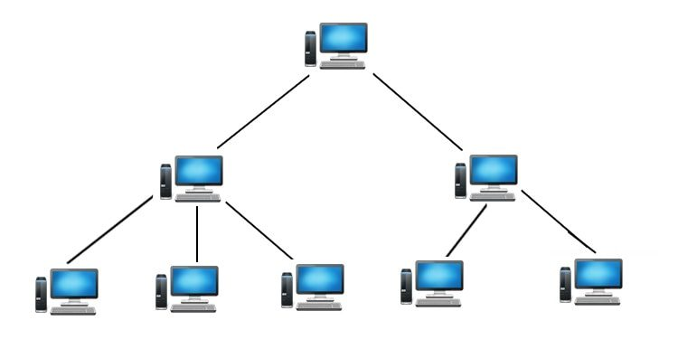 tree topology computer networking
