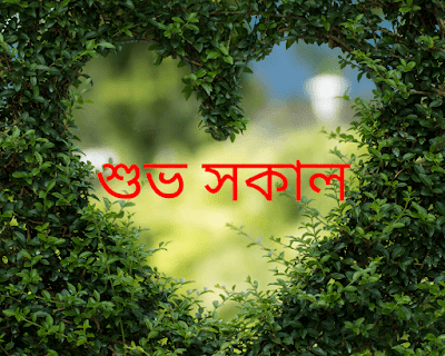Bengali Good Morning love wishes
