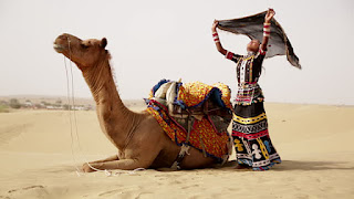 Rajasthani Natural HD wallpapers, Rajasthan nature Photos, rajasthani natural images download