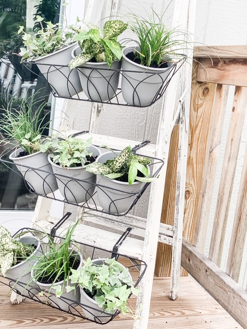 Ladder plant holder with baskets