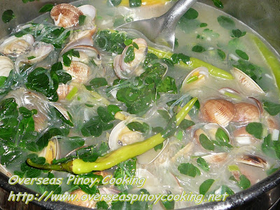 Tinolang Halaan with Sotanghon - Cooking Procedure