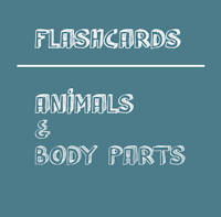Animals Body Parts Flashcards