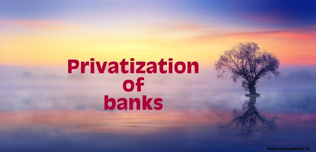 Information about Privatization of banks