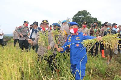 Dansat Brimob Polda Jambi hadiri acara Panen Raya Serentak serta penaburan benih ikan di sri agung tungkal ulu
