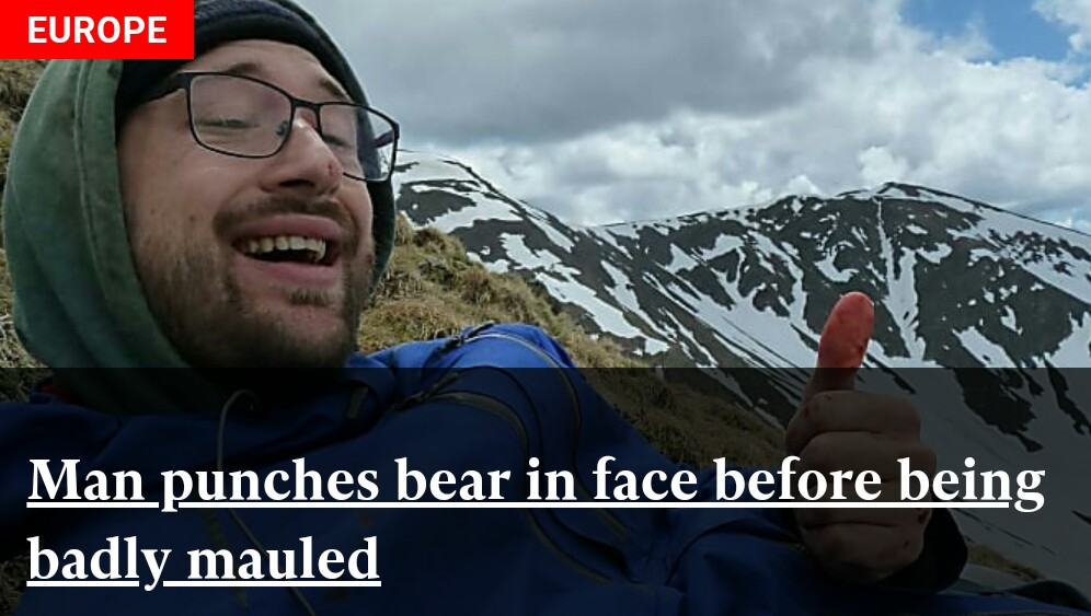 Man punches bear in face before being badly mauled