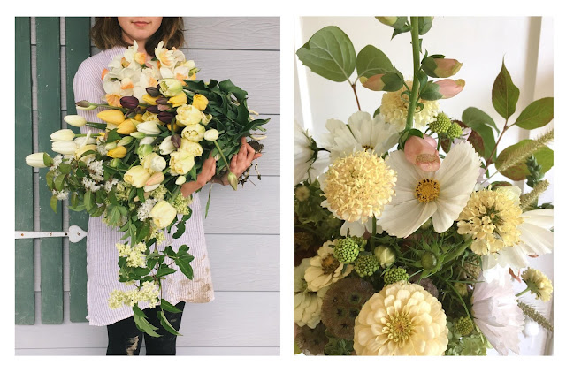 Fleurs coupées fraîches et séchées - Estelle Ferme florale