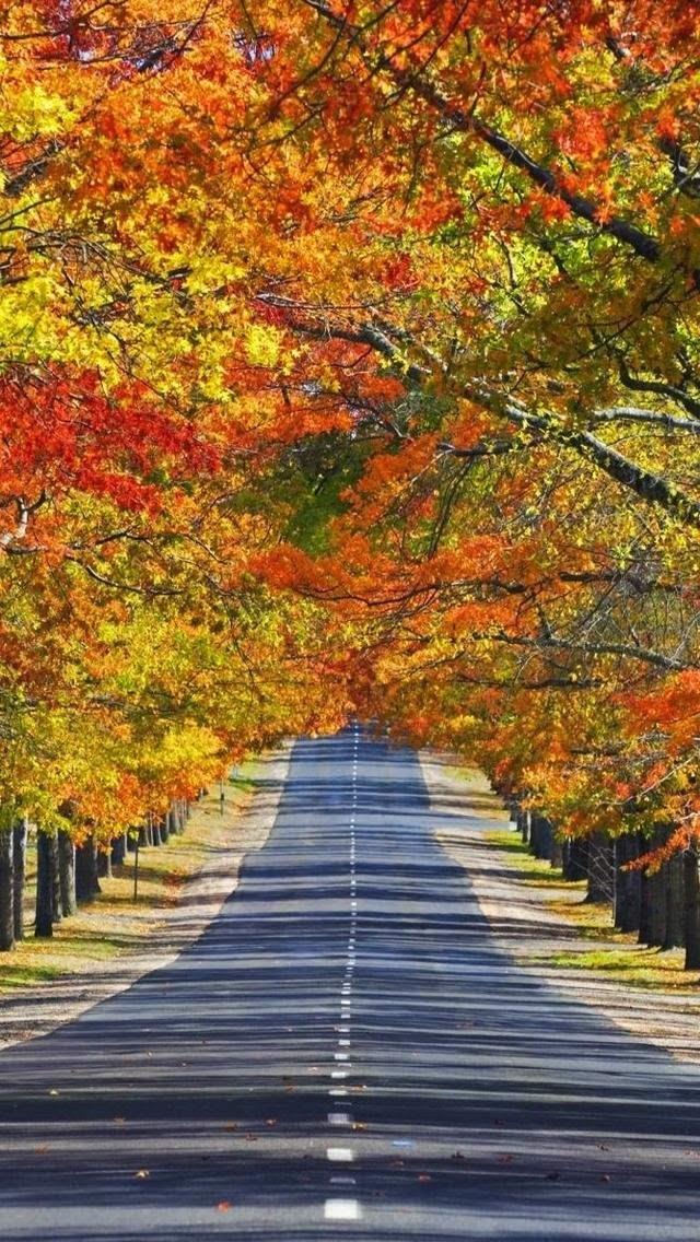 Mount Macedon, Melbourne, State of Victoria, Australia