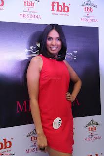 Spatika Surapaneni in Red Tight Dress at FBB Miss India 2017 finalists at Telangana auditions Feb 2017 (11).JPG