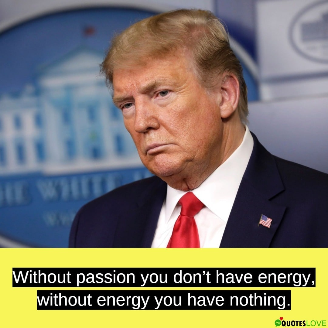 Donald Trump Quotes - Must Read To Believe It